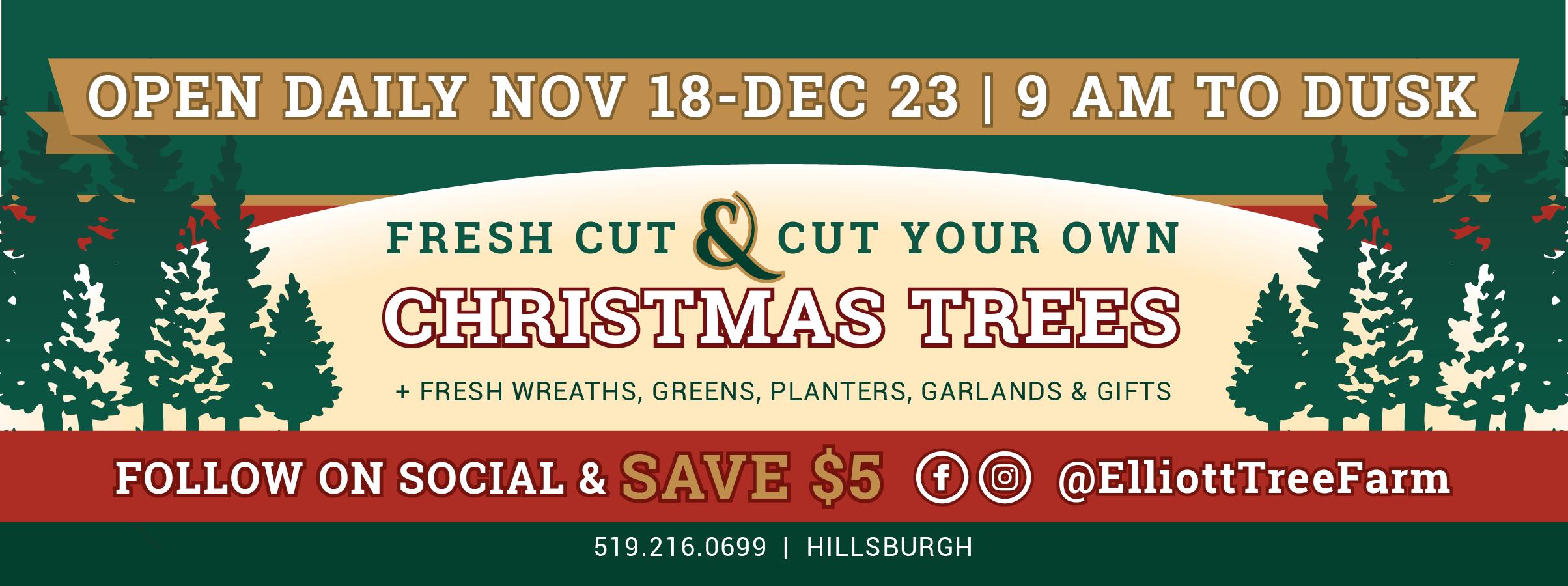 Christmas Trees near Toronto. Open November 17 to 23